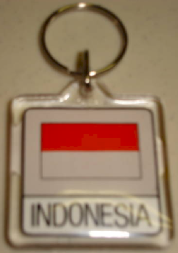 Country Flag Indonesia